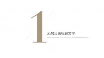 【北欧风】极简雅致白金商务PPT模板4示例5