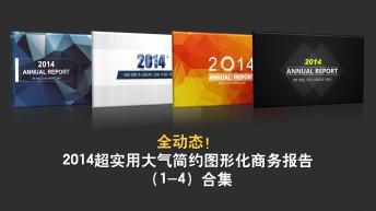 2014超实用大气简约图形化商务报告(1~4)合集