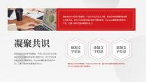 【党建】红色简约大气党建风工作总结模板6示例3