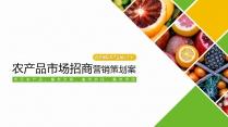 【动画双配色】农业建筑招商项目策划PPT(附教程)
