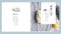 【画册风NO.6】浅蓝浅绿双色美食图文模板