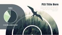【森林飞鸟】绿色简约欧美风商务项目PPT模板示例6
