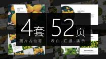 【合集】画册级/杂志风/图片占位符/全图文PPT