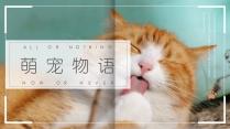 萌宠物语清新画册ppt模板