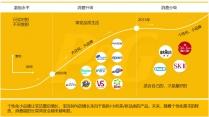 【专业级】消费品 新产品项目 商业计划书示例4