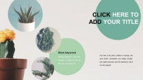 清新绿植时尚杂志风多用途通用模板示例5