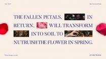 【薄霧】花瓣之壤示例3