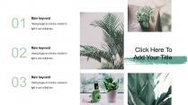 清新绿植时尚杂志风多用途通用模板示例6