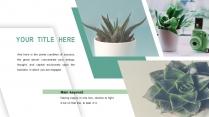 清新绿植时尚杂志风多用途通用模板示例3