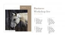 【奢华】质感金高端视觉画册级品牌多用途提案模版示例4