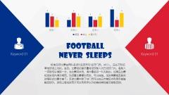 【激情欧洲杯&世界杯】一份简约实用的足球体育模板示例7