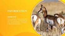 【色彩】炫彩动物环保奶业通用模板示例4