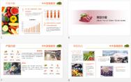 餐饮行业 商业计划书 模板示例4