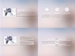 【超性价比】IOS欧美风格商务汇报PPT模板  示例5