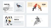 【异世界】像鸟类图鉴一样的PPT模板示例4