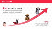 宠物养护医疗PPT模板示例7