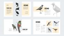 【异世界】像鸟类图鉴一样的PPT模板示例5