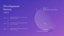 紫色高端大气工作报告模板【208】示例3