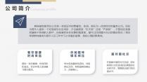 详细框架商业融资计划书示例4