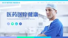 【扁平化】医药医疗健康行业通用公司产品服务项目简介