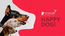 宠物养护医疗PPT模板
