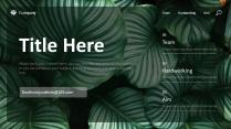 墨綠清新簡約商務匯報模板