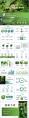 有机绿色PPT模板示例8