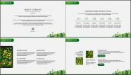 """""""绿色城市""""农业/旅游/环保PPT模板(全可编辑)示例3"""