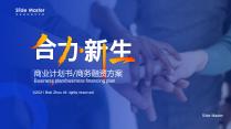 【合力新生】真计划高端商务融资投资计划书
