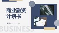 详细框架商业融资计划书示例2