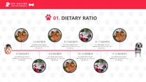 宠物养护医疗PPT模板示例6