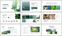 綠色環境野生動物保護匯報PPT模板示例5