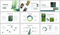 綠色環境野生動物保護匯報PPT模板示例6