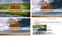 年度報告 年終總結 簡潔 多圖表 三種配色