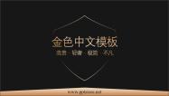 【轻奢不凡】全中文金色系模板