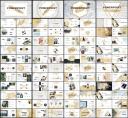 四套合集-素白铂金系列通用模板【80页】示例7