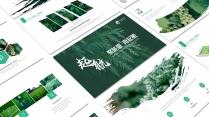 起航绿色自然(2)PPT模板【193】