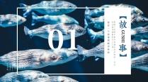 【引·海洋传说】图文混排文艺模板示例3