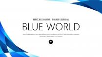 蓝色品牌公司介绍企业宣传工作PPT