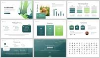綠色環境野生動物保護匯報PPT模板示例7
