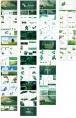 绿色工作报告PPT模板合集含四套示例7