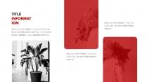 「简。」清新雅致商务极简风模板2示例6