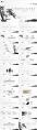 【动态】水墨竹中国风模板(双配色)示例5